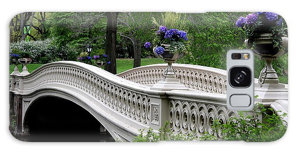 Bow Bridge Flower Pots - Central Park N Y C Galaxy Case