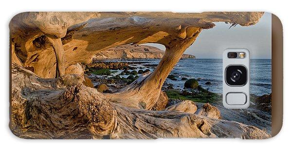 Bowling Ball Beach Framed In Driftwood Galaxy Case