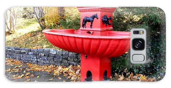 Bowring Park Horse Trough  Galaxy Case