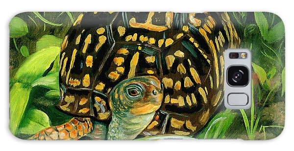 Box Turtle Galaxy Case