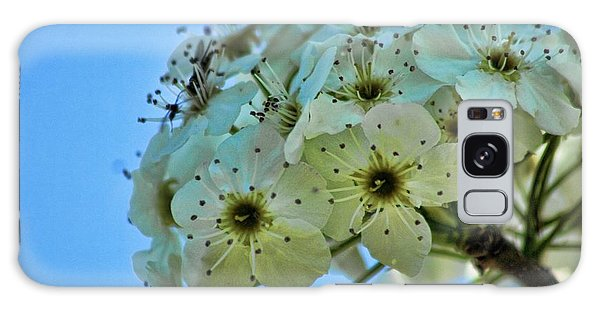 Bradford Pear I Galaxy Case