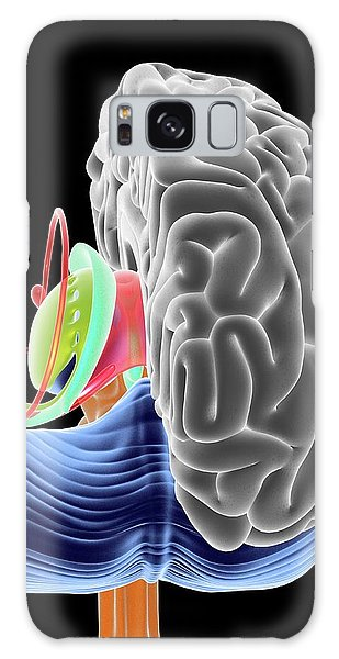 Brainstem Galaxy Case - Brain Section by Alfred Pasieka
