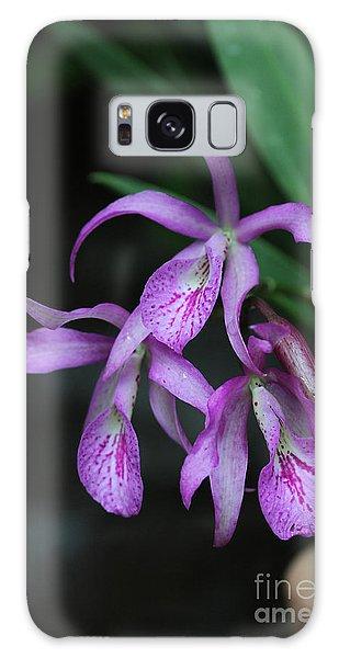 Brassanthe Maikai Orchid Galaxy Case