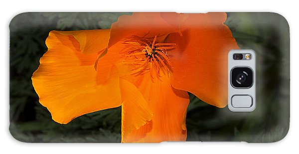 Bright California Poppy Galaxy Case