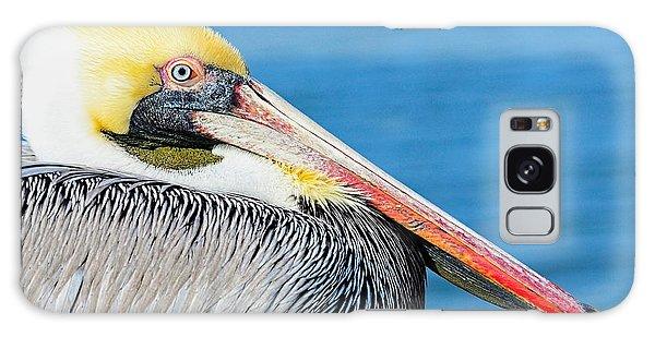Bright Eyed Pelican Galaxy Case by Pamela Blizzard