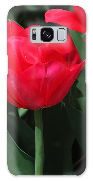 Bright Red Tulip Galaxy Case by Bill Woodstock