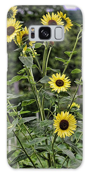 Bright Sunflowers Galaxy Case by Denise Romano