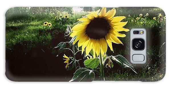 Florals Galaxy Case - Brighten Your Day  by Scott Pellegrin