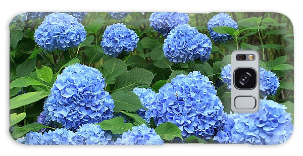 Kansai Galaxy Case - Brightly Colored Hydrangea Flowers by Paul Dymond