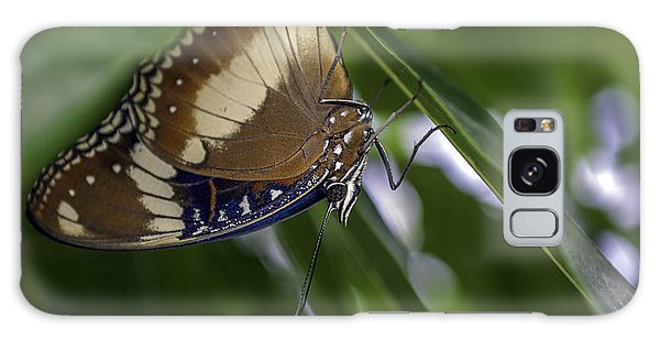 Brilliant Butterfly Galaxy Case