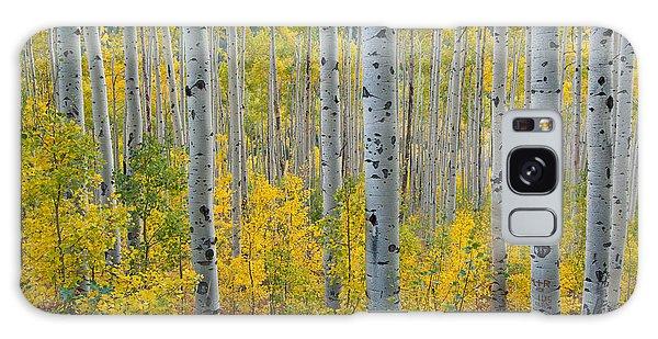 Brilliant Colors Of The Autumn Aspen Forest Galaxy Case