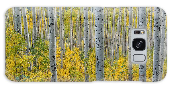 Brilliant Colors Of The Autumn Aspen Forest Galaxy Case