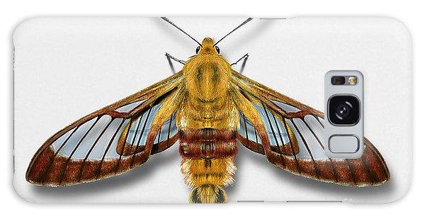 Broad-bordered Bee Hawk Moth Butterfly - Hemaris Fuciformis Naturalistic Painting -nettersheim Eifel Galaxy Case