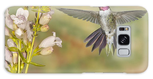 Broad Tailed Hummingbird 2 Galaxy Case