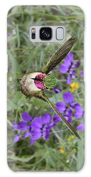 Broad-tailed Hummingbird - Phone Case Galaxy Case