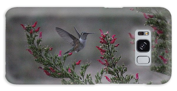 Broad Tailed Hummingbird Galaxy Case