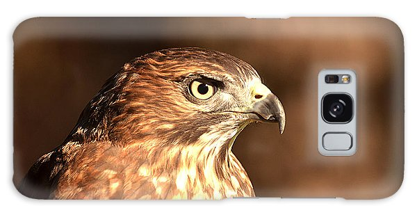 Broad-winged Hawk Galaxy Case