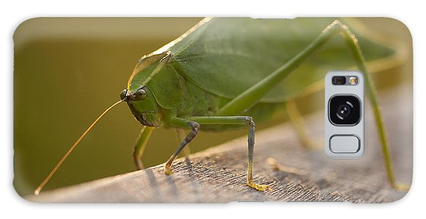 Broad-winged Katydid Galaxy Case by Meg Rousher