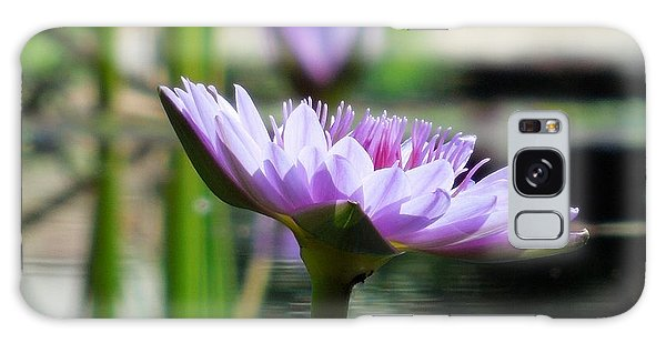 Brookgreen Garden Water Lily Galaxy Case by Chad and Stacey Hall