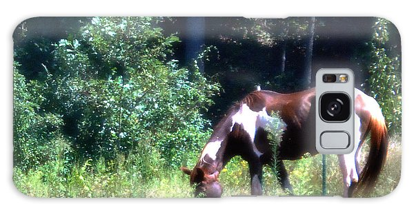 Brown And White Horse Grazing Galaxy Case