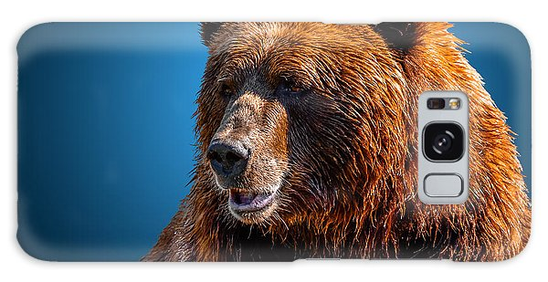 Brown Bear 2 Galaxy Case by Brian Stevens