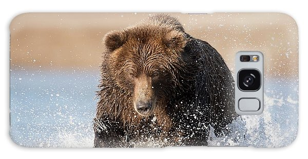 Grizzly Bears Galaxy Case - Brown Bear by Dr P. Marazzi