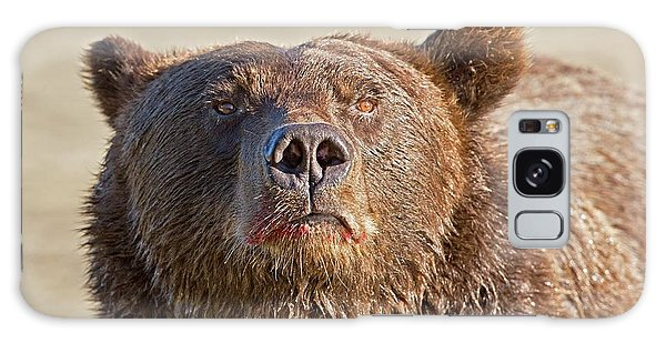 Grizzly Bears Galaxy Case - Brown Bear Sniffing Air by John Devries