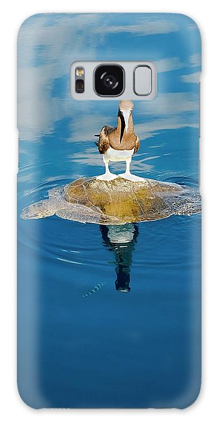 Brown Booby And Marine Turtle Galaxy Case