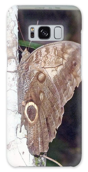 Brown Butterfly Galaxy Case