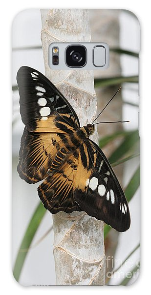 Brown Clipper Butterfly #2 Galaxy Case by Judy Whitton
