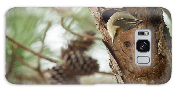 Brown Headed Nuthatch Galaxy Case by Linda Unger
