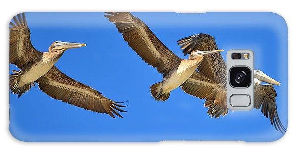 Brown Pelicans In Flight Galaxy Case by Debra Martz