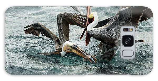 Brown Pelicans Stealing Food Galaxy Case by Christopher Swann