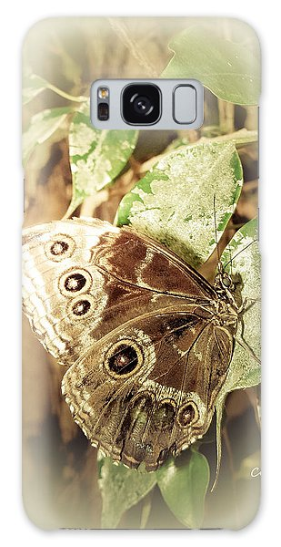 Brown Toned Butterfly Galaxy Case