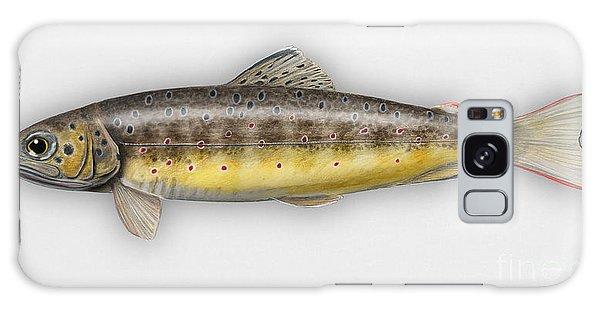 Brown Trout - Salmo Trutta Morpha Fario - Salmo Trutta Fario - Game Fish - Flyfishing Galaxy Case