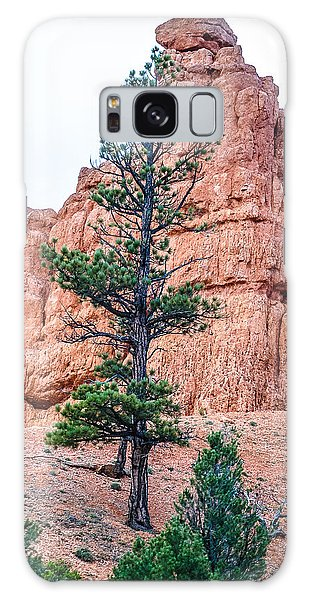 Bryce Canyon Lan468 Galaxy Case