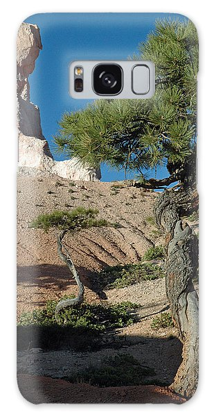 Bryce Canyon Rock Formation And Twisted Trees Galaxy Case