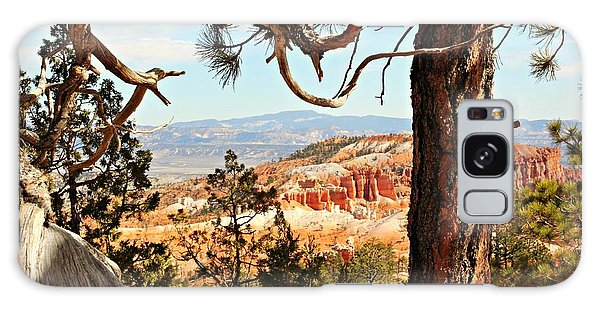 Bryce Canyon Through The Trees Galaxy Case