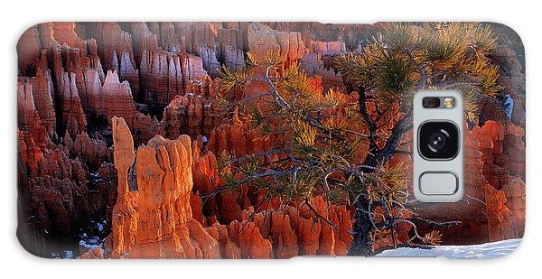 Bryce Canyon Winter Light Galaxy Case