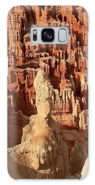 Bryce National Park Galaxy Case