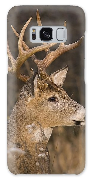 Buck Portrait Galaxy Case by Larry Bohlin