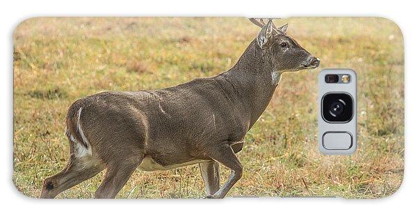 Buck Stallion Galaxy Case