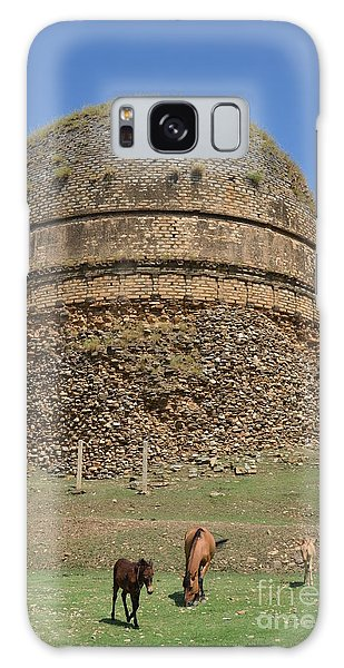Buddhist Religious Stupa Horse And Mules Swat Valley Pakistan Galaxy Case