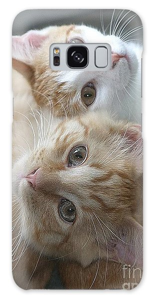 Buddies For Life Galaxy Case by Living Color Photography Lorraine Lynch