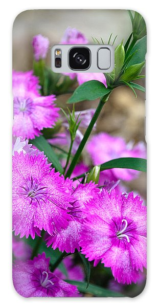 Buds And Blooms 1 Galaxy Case