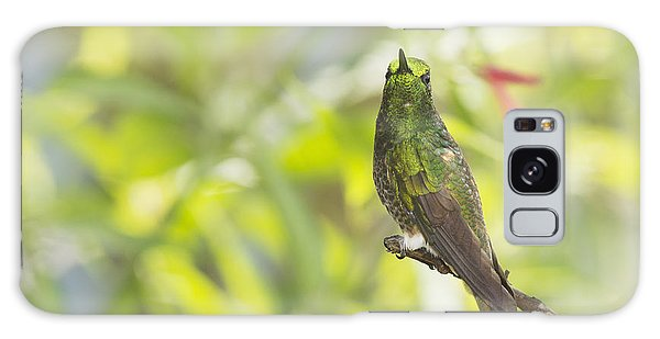 Buff-tailed Coronet Hummingbird Galaxy Case