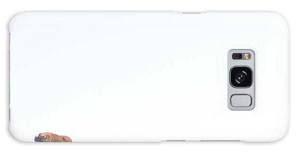 Buffalo Country Galaxy S8 Case