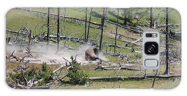 Buffalo Dust Bath Galaxy Case