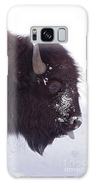 Buffalo In Snow   #6983 Galaxy Case