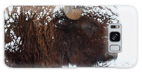 Buffalo Nickel Galaxy Case by Jim Garrison
